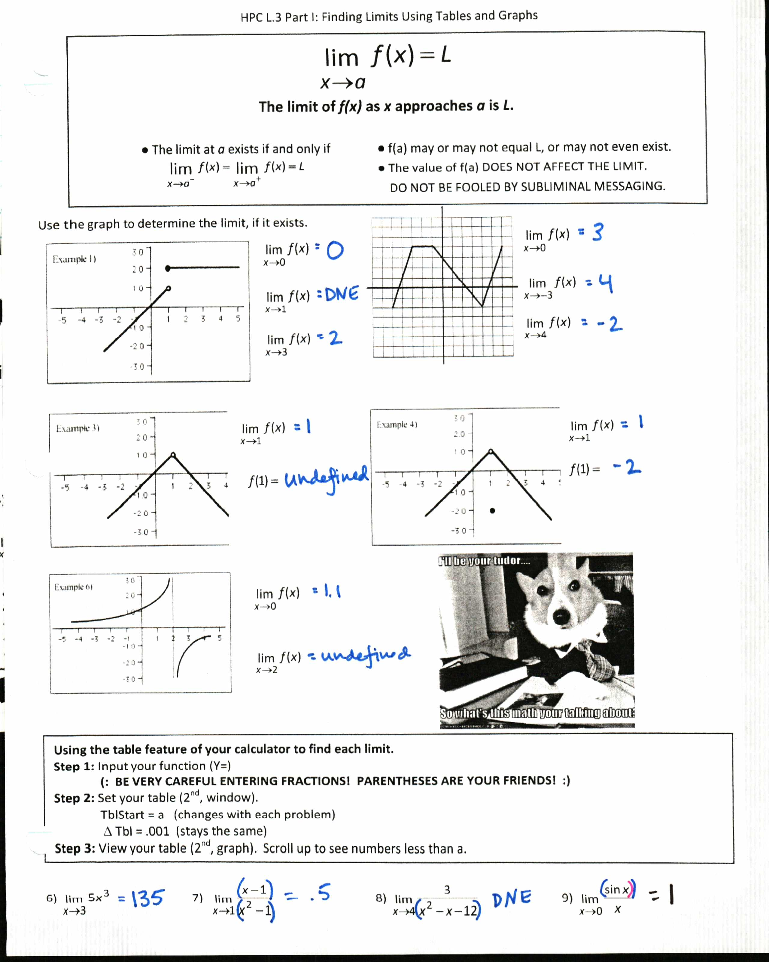 Take it to the Limit Insert Clever Math Pun Here – Pun Worksheet