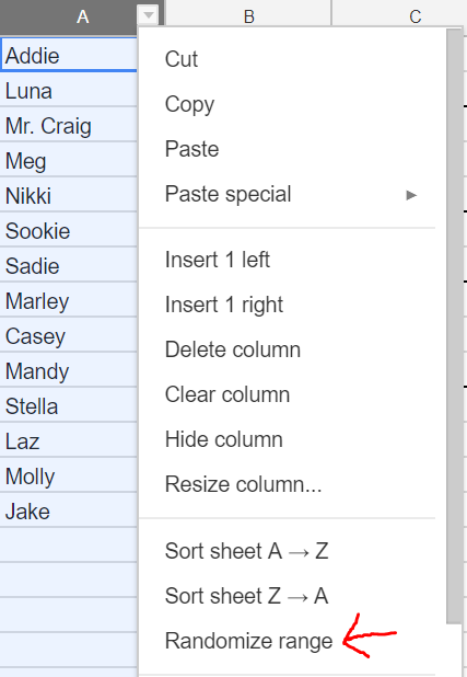 The Easiest, Most-Customizable Seating Chart and VRG Generator Ever™ #SundayFunday